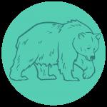 Bute inlet bear